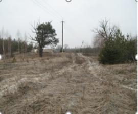 Земельна ділянка, кадастровий номер 3223155400:06:003:0089, для будівництва та обслуговування житлового будинку, господарських будівель і споруд (присадибна ділянка),  загальною площею 1,4 га., за адресою: Київська область, Обухівський район, селище міського типу Козин, реєстраційний номер 458085732231, інвентарний номер 110172